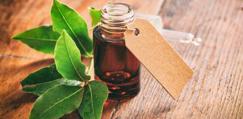 ulei de dafin pentru masaj